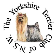 Yorkshire Terrier Club icon=0